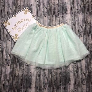 H&M Puffy Tulle Skirt